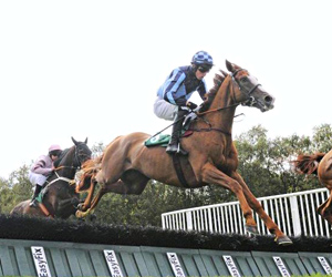 Point to Point Horse Racing - Jonathan Fogarty Racing Wexford